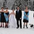 Stanchi dei soliti matrimoni in location vista mare? Ecco a voi una scelta del tutto alternativa: matrimonio al polo nord… Molto più romantico e suggestivo, vi permetterà di godere di...
